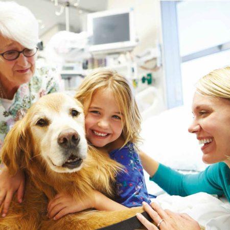 Corso di Pet Therapy