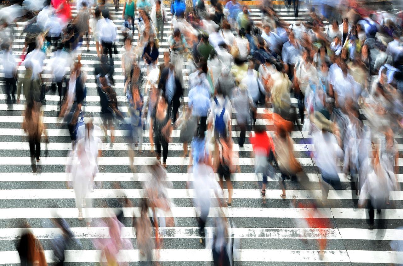 Mercato del lavoro: ecco le competenze più richieste